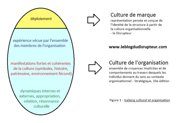 Iceberg culturel et organisation.png
