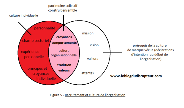 recrutement-et-culture-de-lorganisation